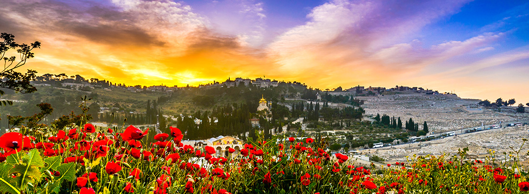 10 Day Private Messianic Israel Tour - Jerusalem Focus