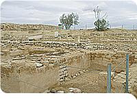negev desert tour israel